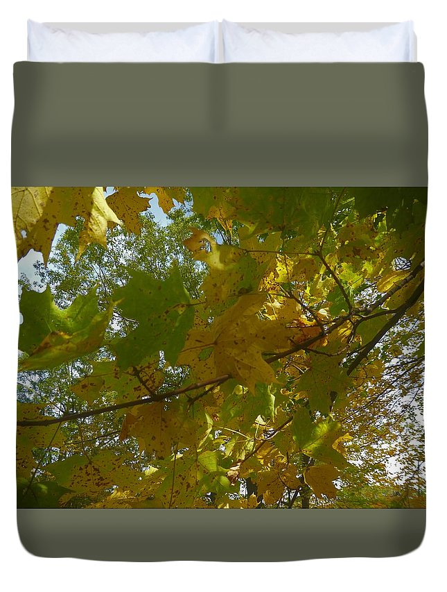 Spencer Gorge Ontario Autumn Leaves Yellow Duvet Cover featuring the photograph A View From Below by The Sangsters