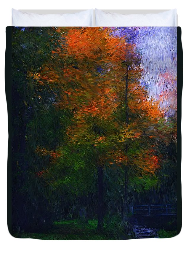 Autumn Duvet Cover featuring the photograph A Walk In The Park by David Lane