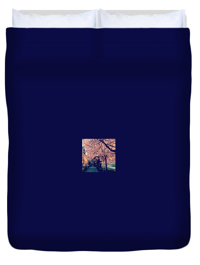 Japan Duvet Cover featuring the photograph A Way Under The Cherry Blossom by Ryota Takahashi