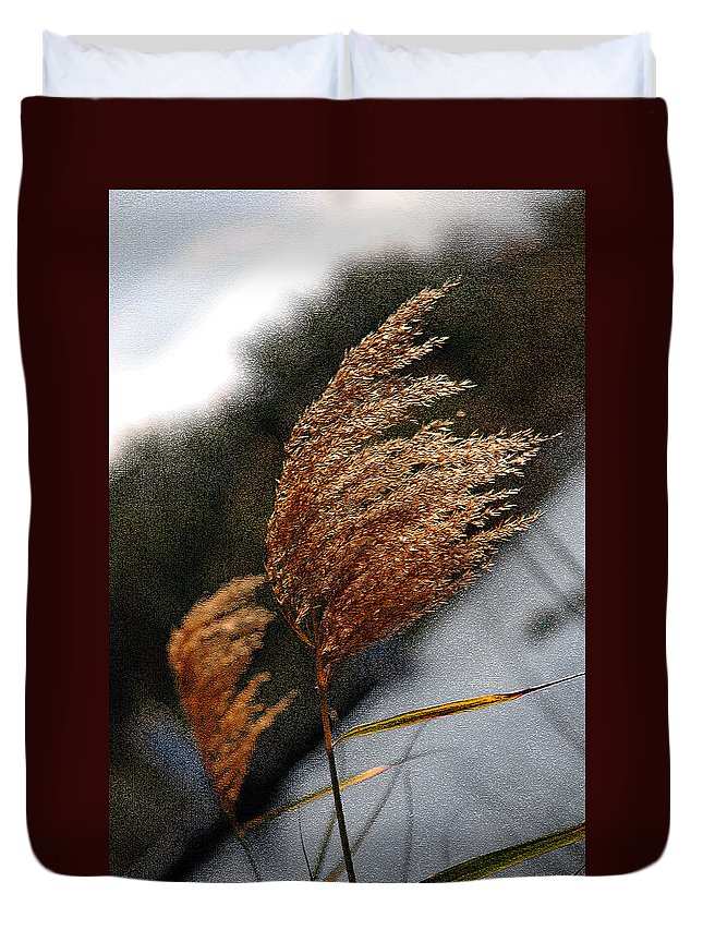 Sea Grass Duvet Cover featuring the photograph A Windy Day by Susanne Van Hulst