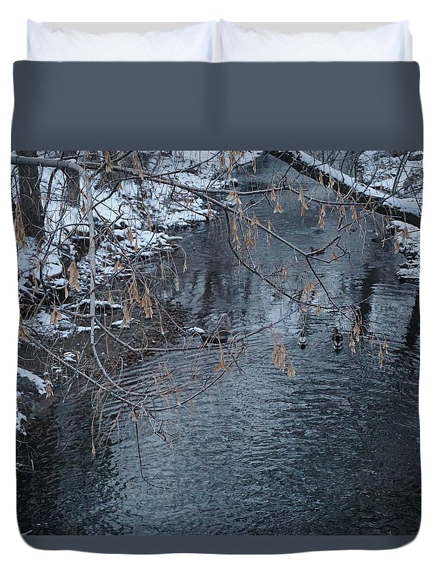 Ducks Duvet Cover featuring the photograph A Winter Swim by Laura Costa