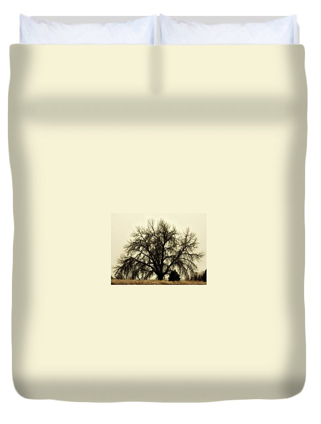 Tree Duvet Cover featuring the photograph A Winter's Day by Marilyn Hunt
