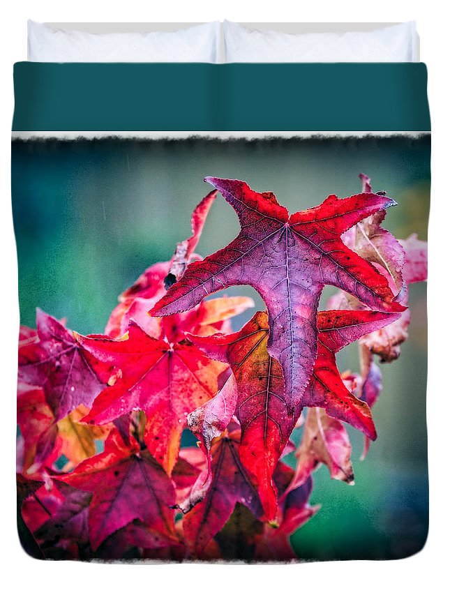 Red Duvet Cover featuring the photograph Ablaze by Barb Leopold