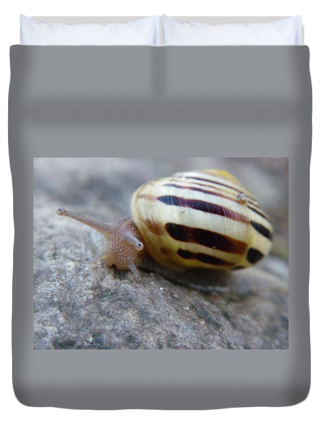 Nature Duvet Cover featuring the photograph About Face by Peggy King