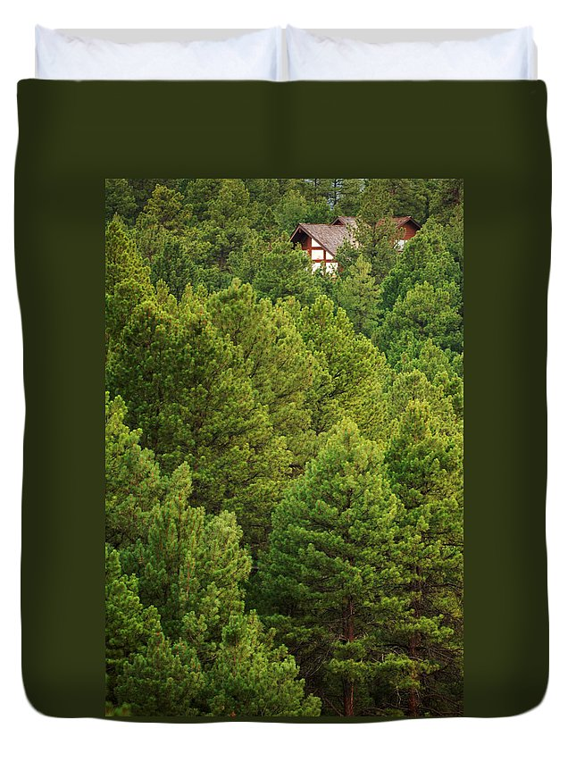 House Duvet Cover featuring the photograph Above It All by Jill Reger