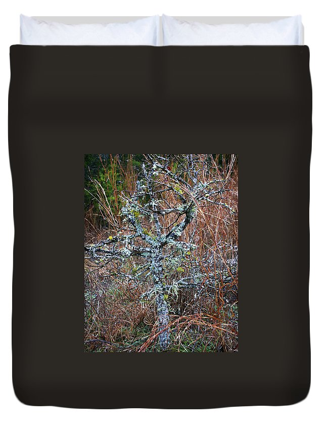 Abstract Duvet Cover featuring the photograph Abstract and Lichen by Marilyn Hunt