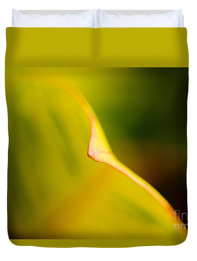 83-pfs0182 Duvet Cover featuring the photograph Abstract Leaf by Ray Laskowitz - Printscapes