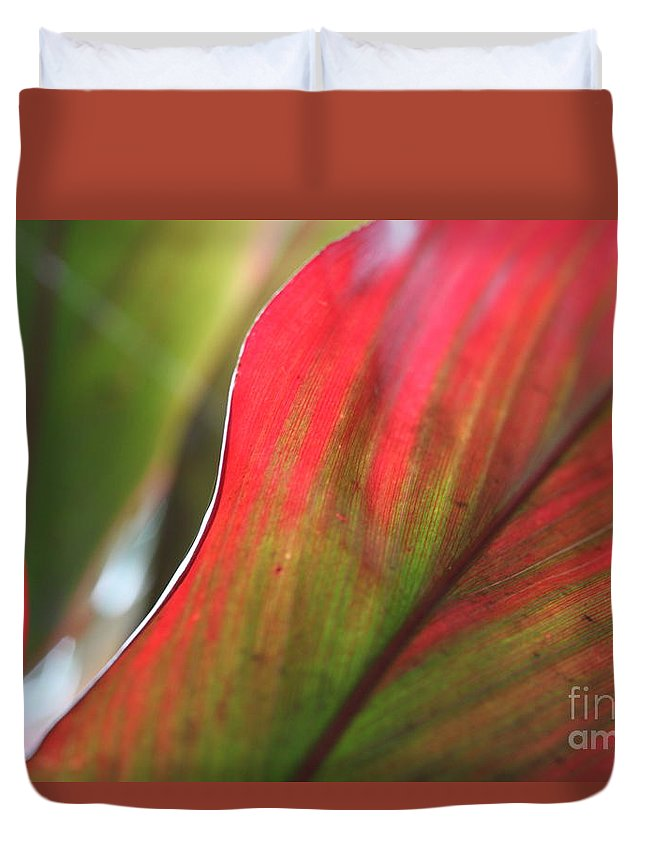 Pink Duvet Cover featuring the photograph Abstract Leaves by Nadine Rippelmeyer