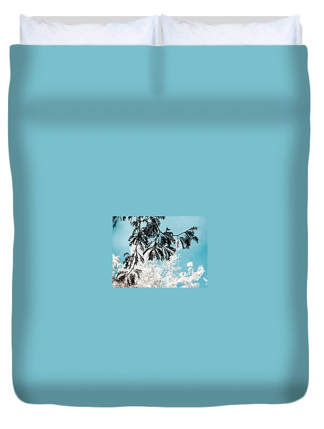 Tree Duvet Cover featuring the photograph Abstract Locust by Marilyn Hunt