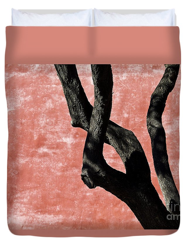 Abstract Duvet Cover featuring the photograph Abstract Tree Trunk by Ray Laskowitz - Printscapes
