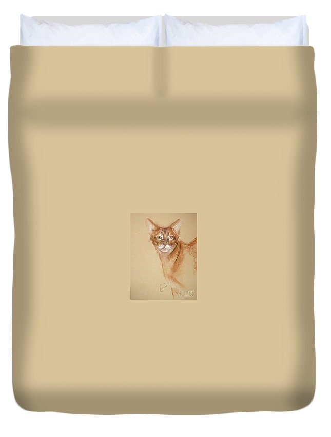 Pastel Duvet Cover featuring the drawing Abyssinian by Cori Solomon