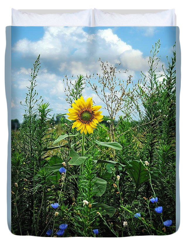 Sun Flower Duvet Cover featuring the photograph Accidental Beauty by Dale Misuraca