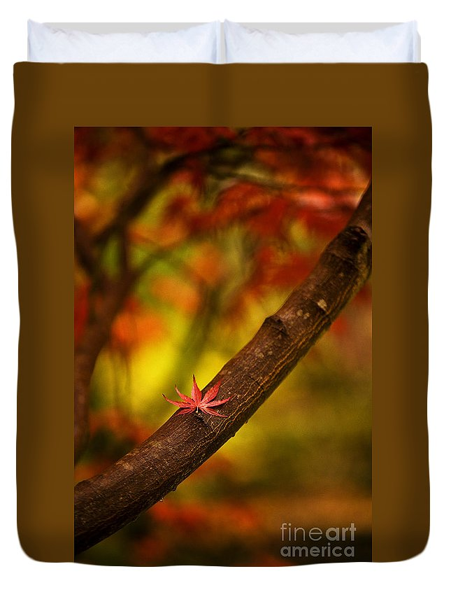 Acer Duvet Cover featuring the photograph Acer Resting by Mike Reid