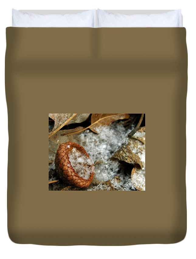 Acorn Duvet Cover featuring the photograph Acorn Cap Filled With Snow by Kimberly Mohlenhoff