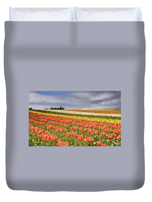 Tulips Duvet Cover featuring the photograph Across Colorful Fields by Mike Dawson