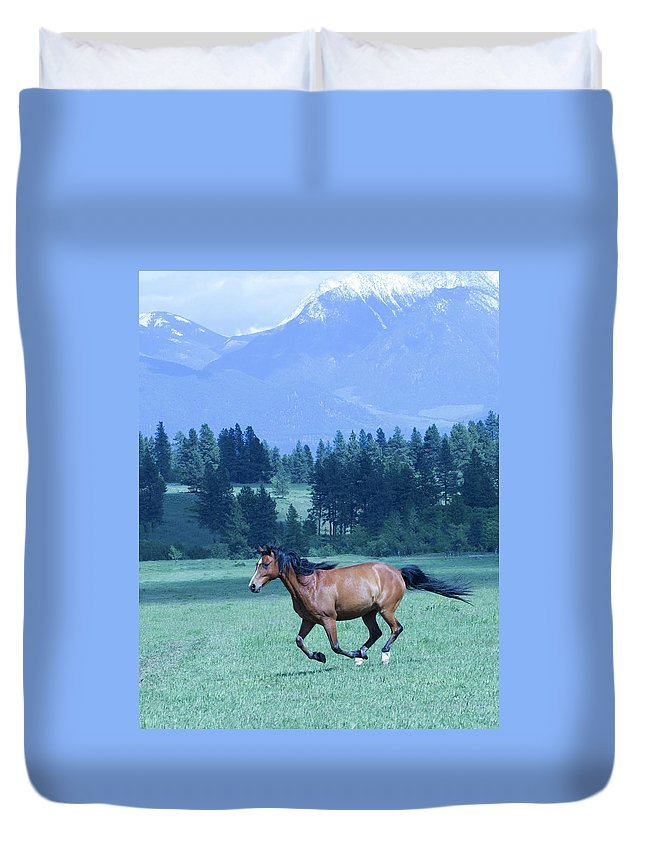 Mountains Duvet Cover featuring the photograph Across The Field by Eleszabeth McNeel