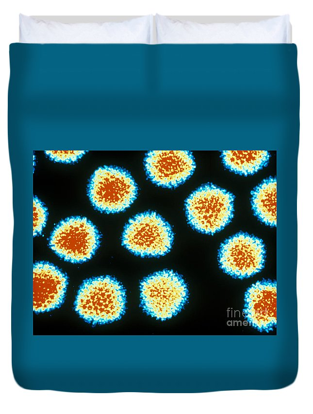Medical Duvet Cover featuring the photograph Adenovirus Tem by Omikron