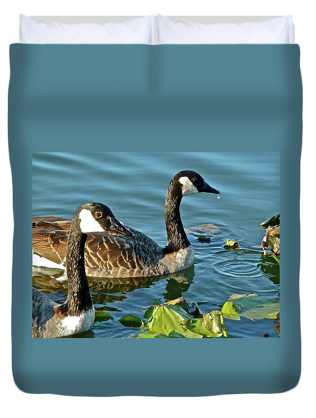 Bird Duvet Cover featuring the photograph Adolescents by Diana Hatcher