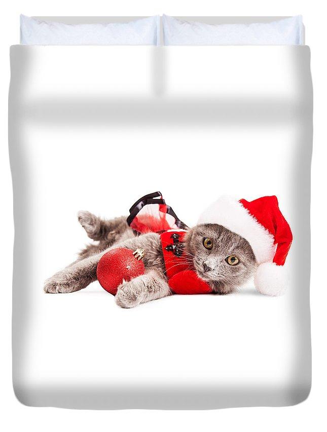 Adorable Duvet Cover featuring the photograph Adorable Christmas Kitten Over White by Susan Schmitz