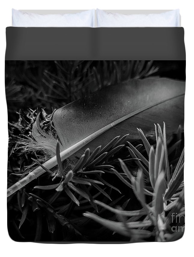 Feather Duvet Cover featuring the photograph Afeather by James Aiken