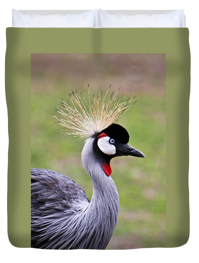 Bird Duvet Cover featuring the photograph African Crowned Crane by Douglas Barnett