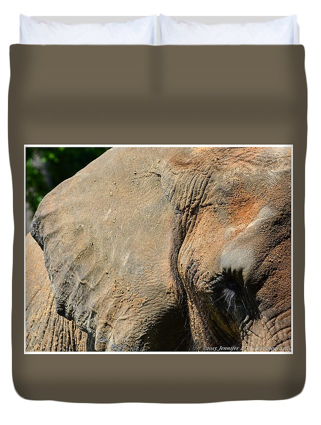 Elephant Duvet Cover featuring the photograph African Elephant by Jennifer Wick