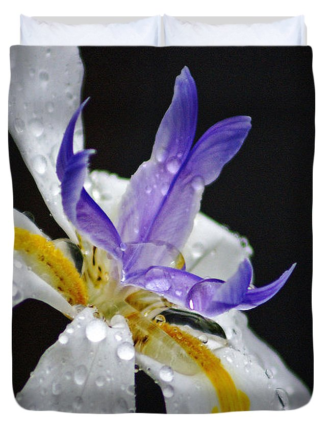 Flowers Duvet Cover featuring the photograph African Iris by Holly Kempe