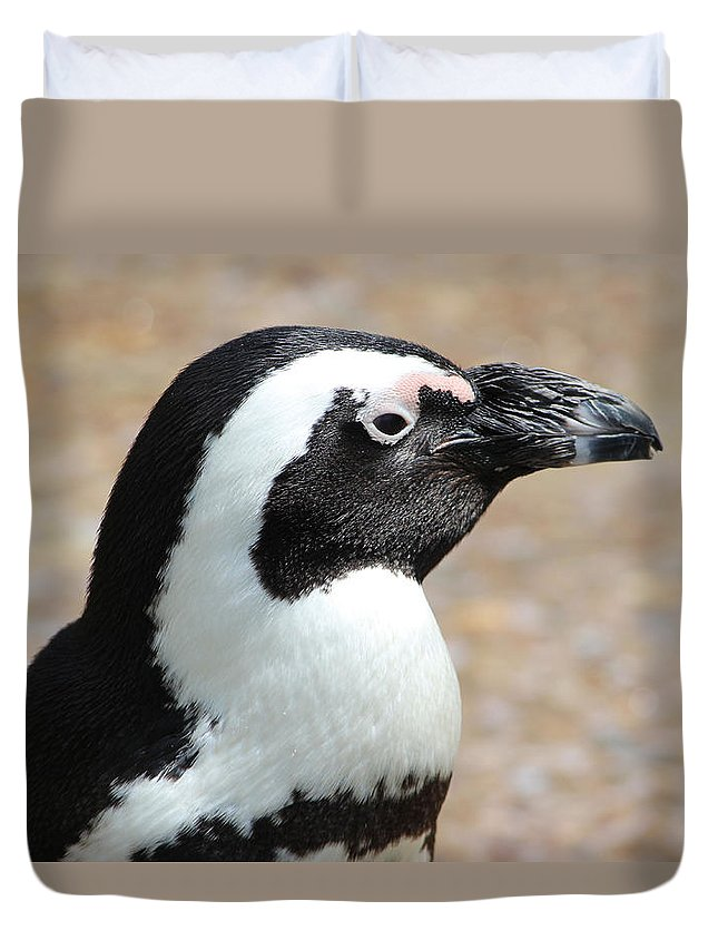 Penguin Duvet Cover featuring the photograph African Penguin by Joscelyn Paine