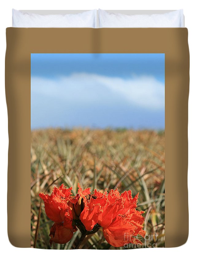 Aloha Duvet Cover featuring the photograph African Tulip Blossom Over Pineapple Field Aloha Makawao by Sharon Mau