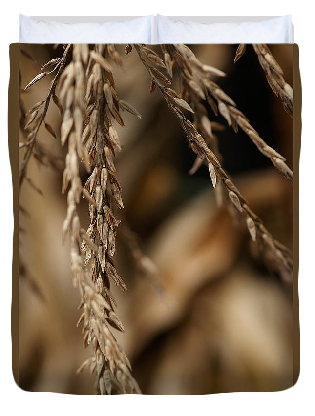 Corn Duvet Cover featuring the photograph After The Harvest - 3 by Linda Shafer