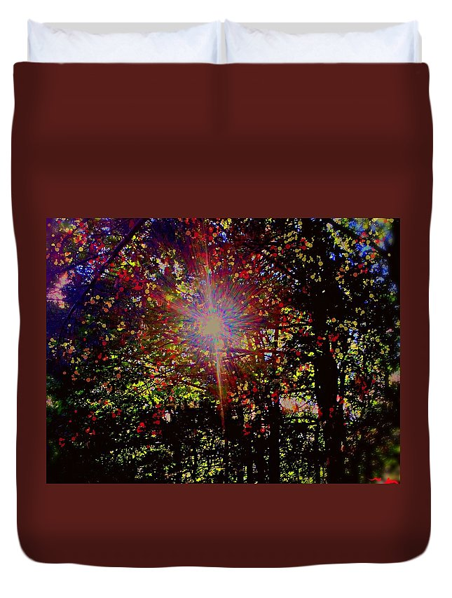 Light Duvet Cover featuring the photograph Afternoon Light by Bill Minkowitz