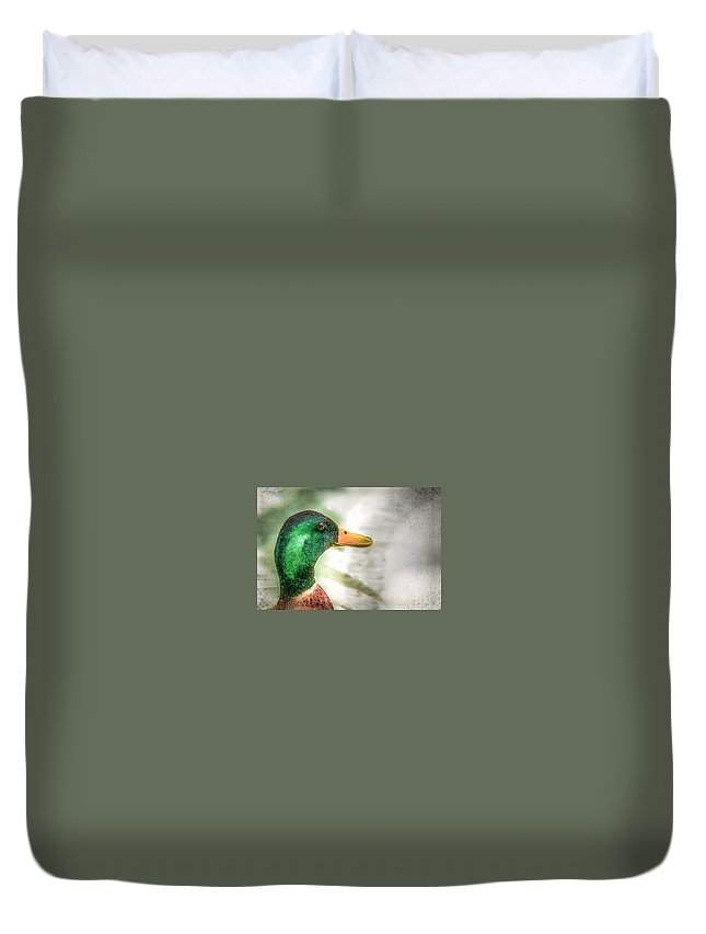 Mallard Duvet Cover featuring the photograph Afternoon Surprise by Cheryl Beck