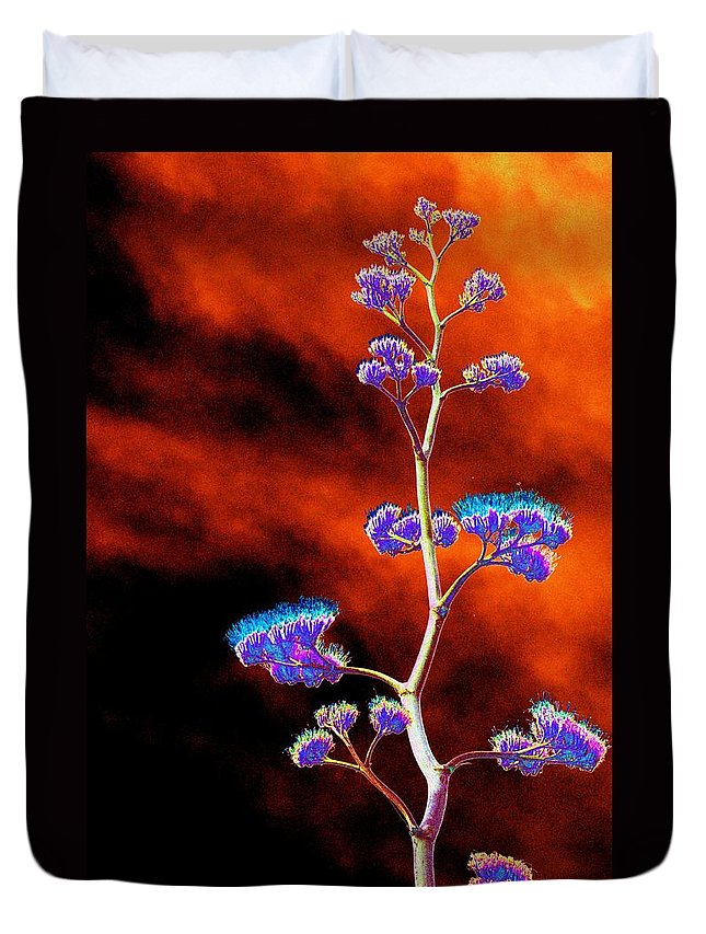 Agave Duvet Cover featuring the photograph Agave Through Tequila Eyes by Richard Henne