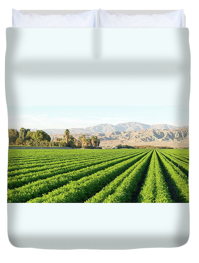 Farm Duvet Cover featuring the photograph Agriculture In The Desert by Thomas Anderson