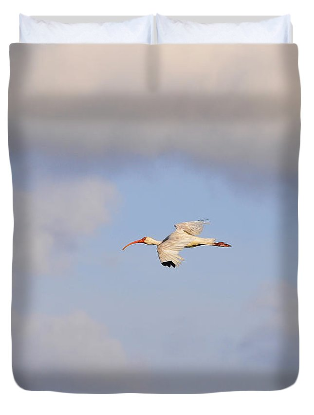 Ibis Duvet Cover featuring the photograph Airborne Ibis by Al Powell Photography USA