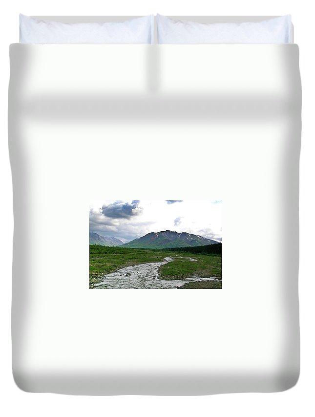 Denali Duvet Cover featuring the photograph Alaska Denali National Park Landscape 1 by Douglas Barnett