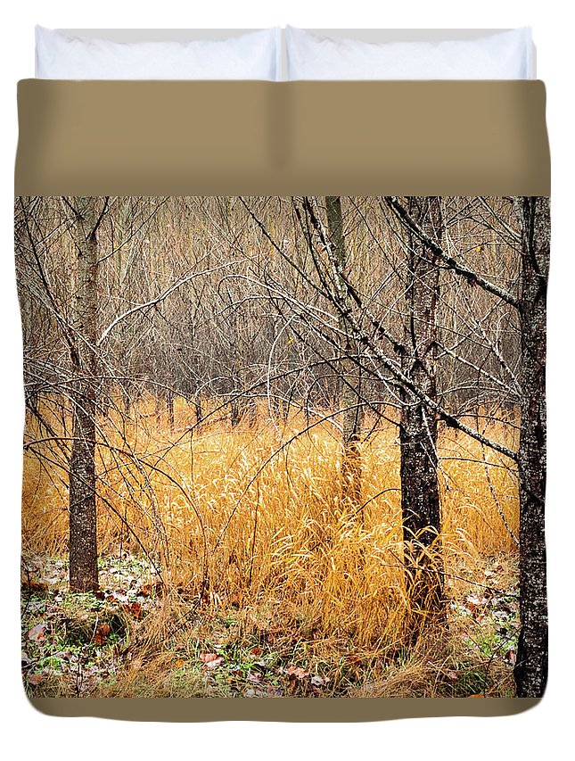 Landscapes Duvet Cover featuring the photograph Alder Grove by Claude Dalley