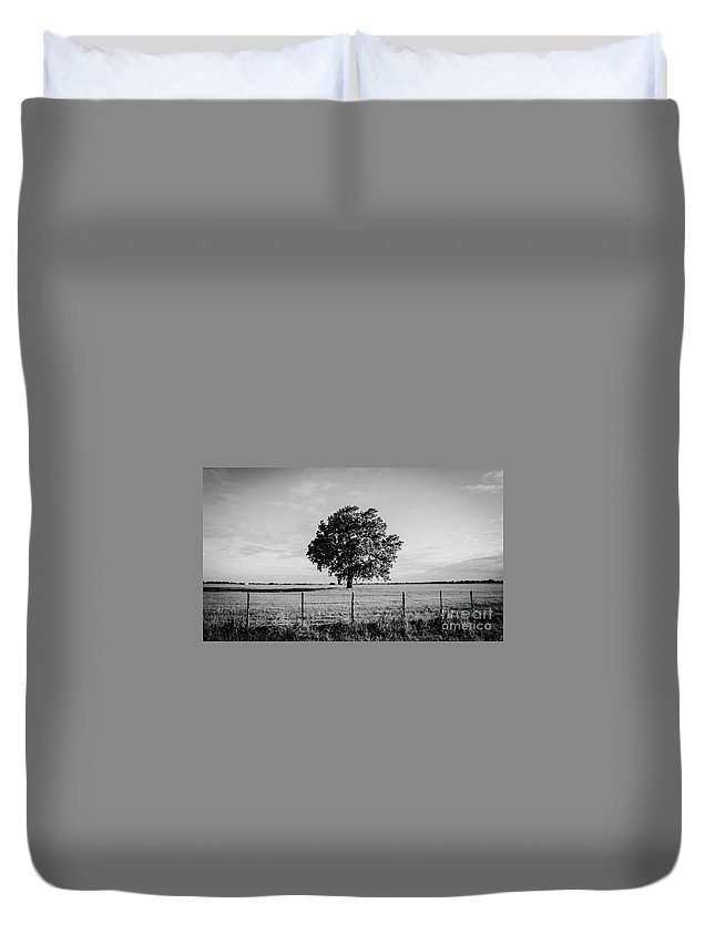 Single Tree Black And White Duvet Cover featuring the photograph All Alone by Tammy Reynolds