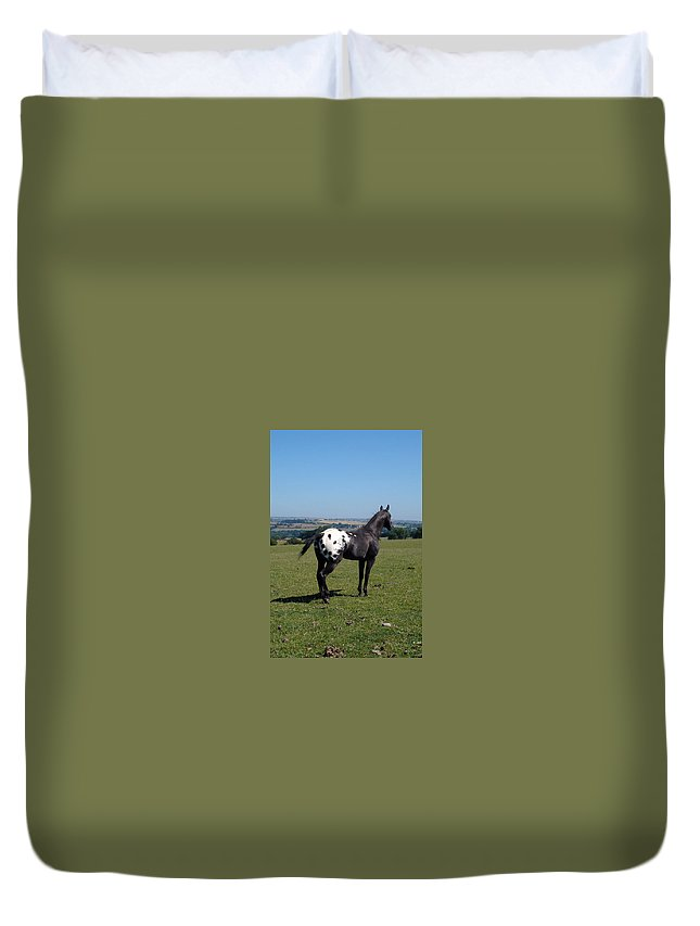 Horses Duvet Cover featuring the photograph All He Surveys by Susan Baker