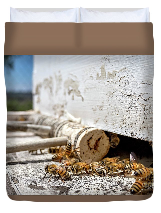 Apis Duvet Cover featuring the photograph All In A Days Work by Shawn Jeffries