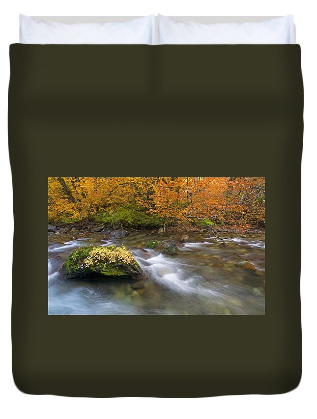 Stream Duvet Cover featuring the photograph All That Is Gold by Mike Dawson