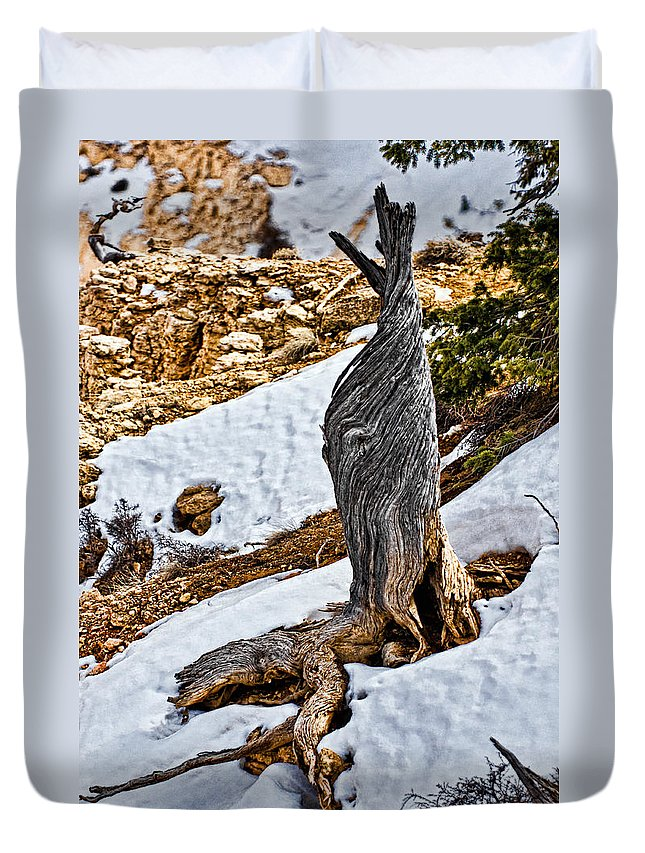 Tree Duvet Cover featuring the photograph All That Remains by Christopher Holmes