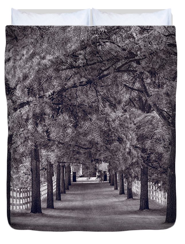 Allee Duvet Cover featuring the photograph Allee Way Bw by Steve Gadomski
