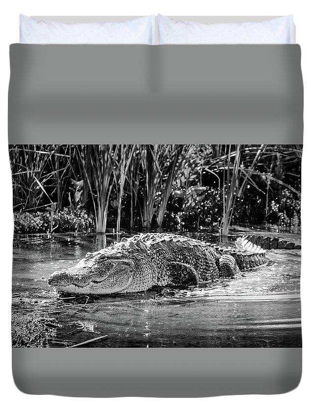 Alligator Bags Of Port Aransas Duvet Cover featuring the photograph Alligator Bags Of Port Aransas by Debra Martz