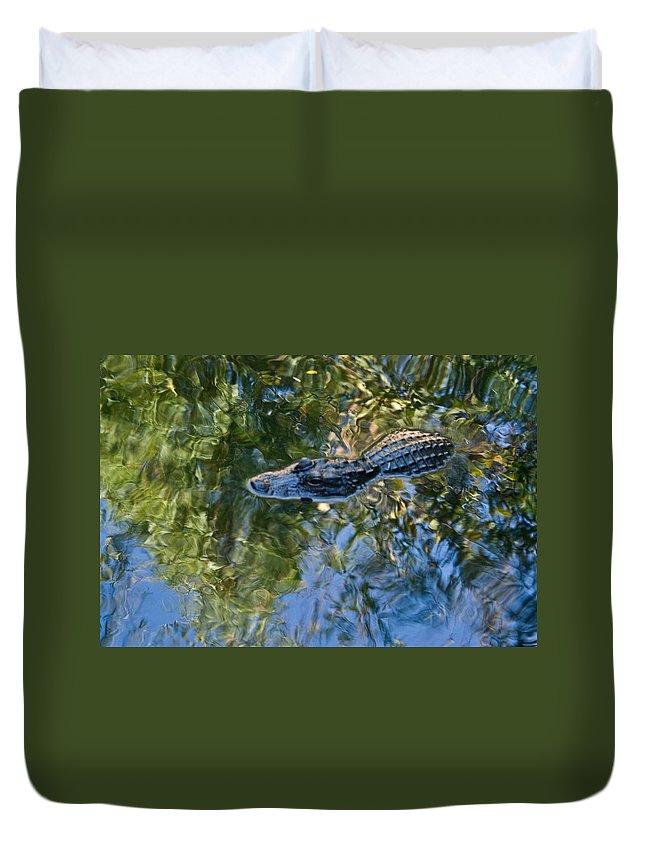 Alligator Duvet Cover featuring the photograph Alligator stalking by Douglas Barnett