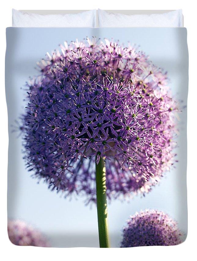 Allium Duvet Cover featuring the photograph Allium Flower by Tony Cordoza