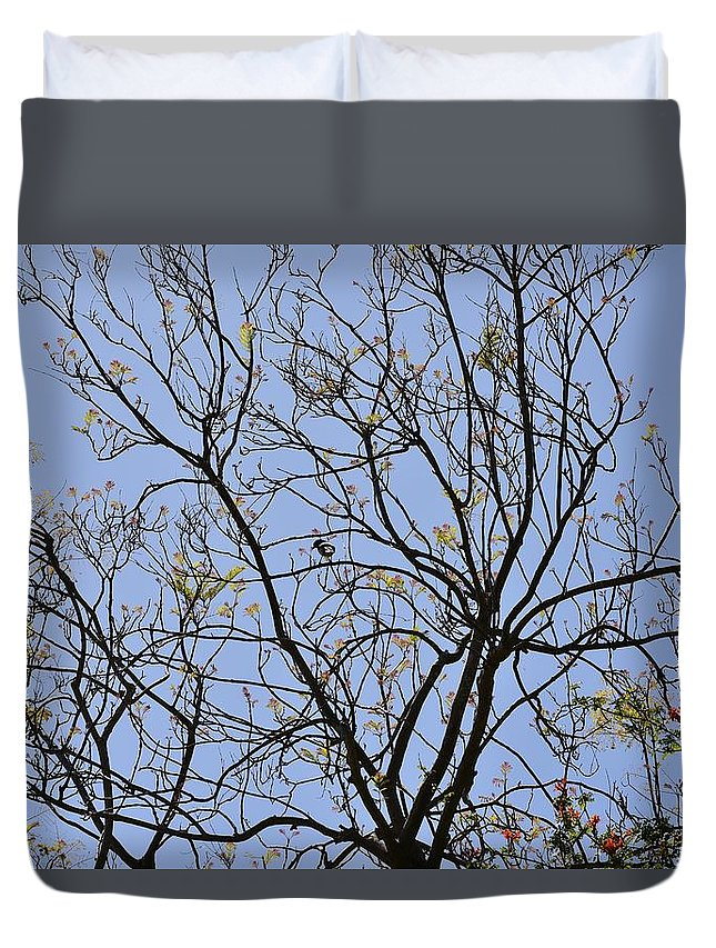 Linda Brody Duvet Cover featuring the photograph Almost Bare With Bird I by Linda Brody