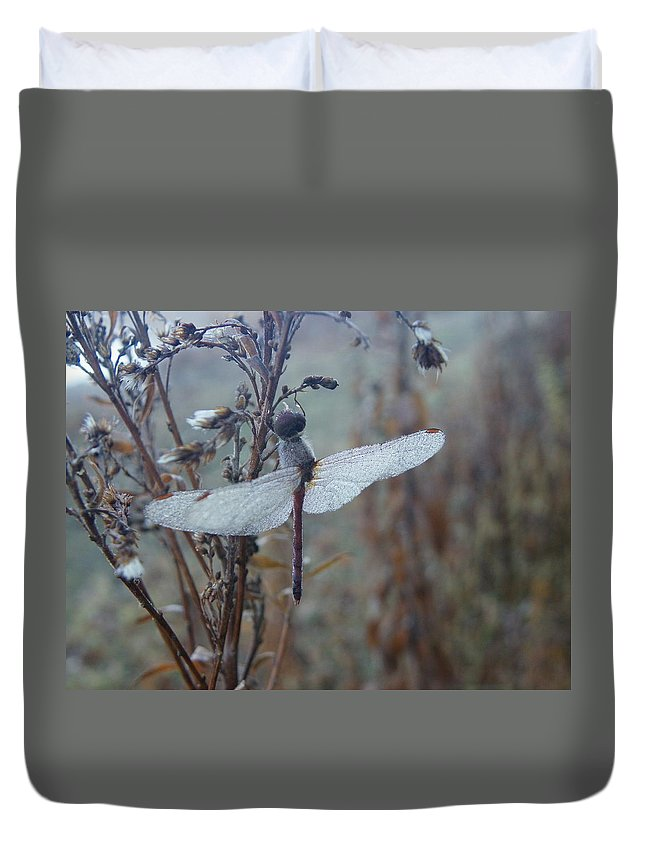 Insects Duvet Cover featuring the photograph Almost Dry by Peggy King