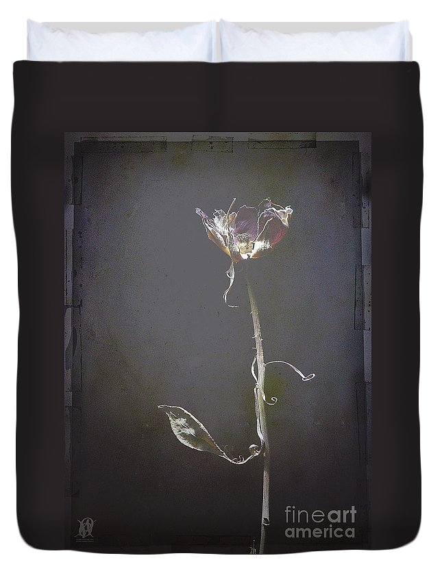 Still Life Duvet Cover featuring the photograph Almost Home by Jacques Pierre Niemandt