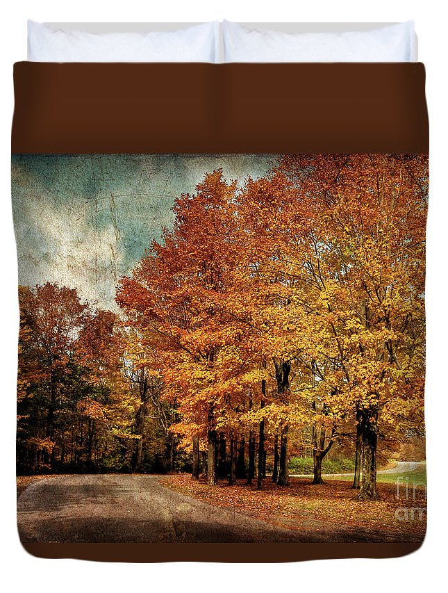 Country Road Duvet Cover featuring the photograph Almost Home by Lois Bryan